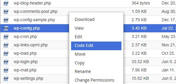 wpconfig file edit